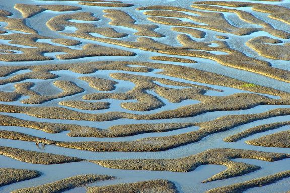staand water op strand